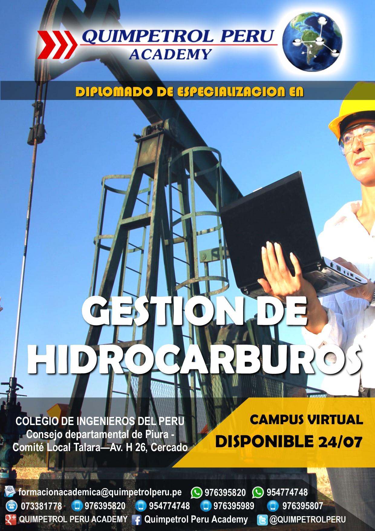 DIPLOMADO EN GESTIÓN DE HIDROCARBUROS - 2° GRUPO
