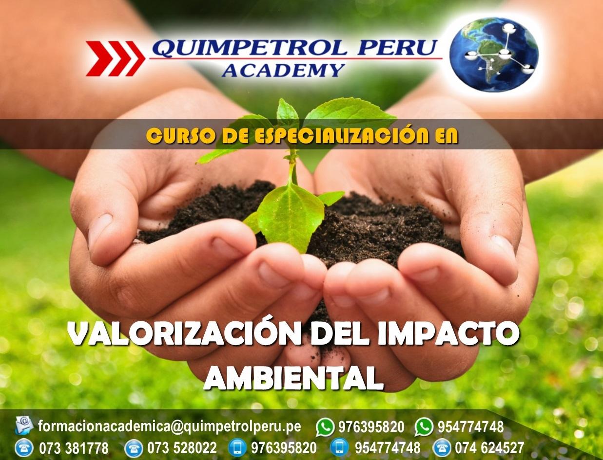 Curso de Especialización: Valorización del Impacto Ambiental